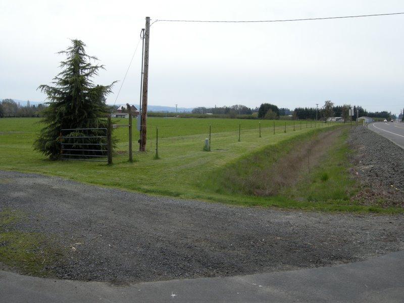 Fence line on 4/20/11